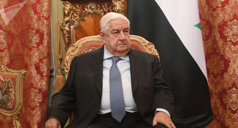 وزير الخاريجة السوري وليد المعلم، 23 ديسمبر 2019