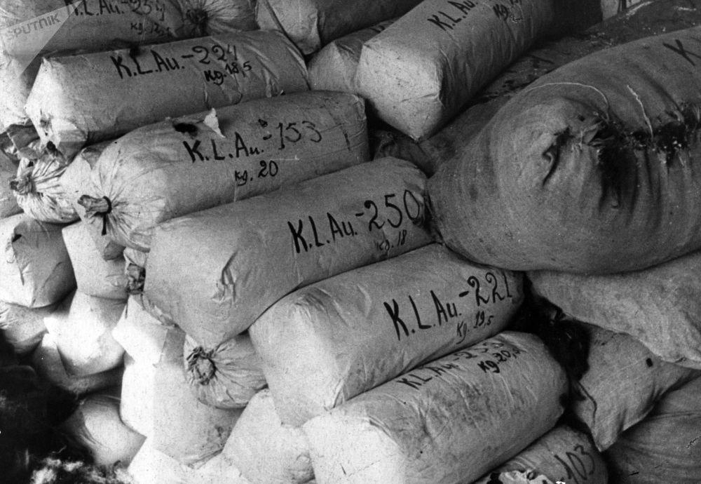 أكياس شعر السجناء الذين تم القضاء عليهم في معسكر اعتقال أوشفيتز في بولندا. يعد معسكر أوشفيتز أكبر معسكرات الإبادة النازية وأكثرها بقاء لفترة زمنية طويلة. لذا، فقد أصبح أحد الرموز الرئيسية للمحرقة (الهولوكوست). وفقًا لوثائق محكمة نورمبرغ، قُتل 2.8 مليون شخص في المعسكر خلال فترة 1941-1945، 90٪ منهم كانوا من اليهود.