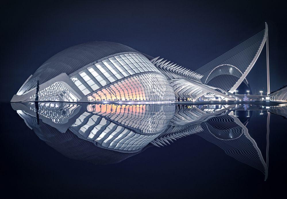 الصورة بعنوان سمكة، للمصور الإسباني بيدرو لويس أجورياغيرا سايز، الذي فاز في مسابقة فن البناء لعام 2019