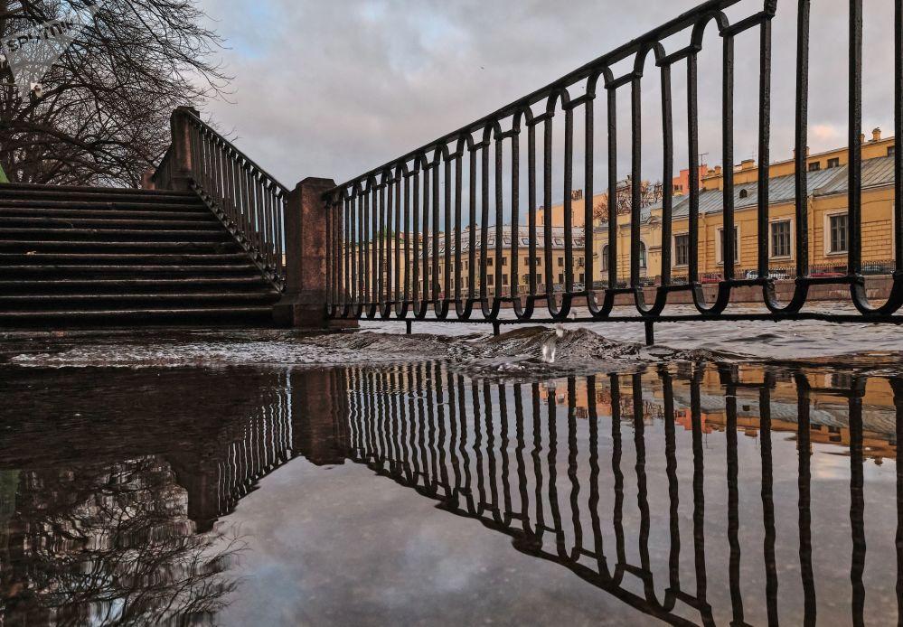 ضفة نهر فونتانكا في مدينة سان بطرسبورغ