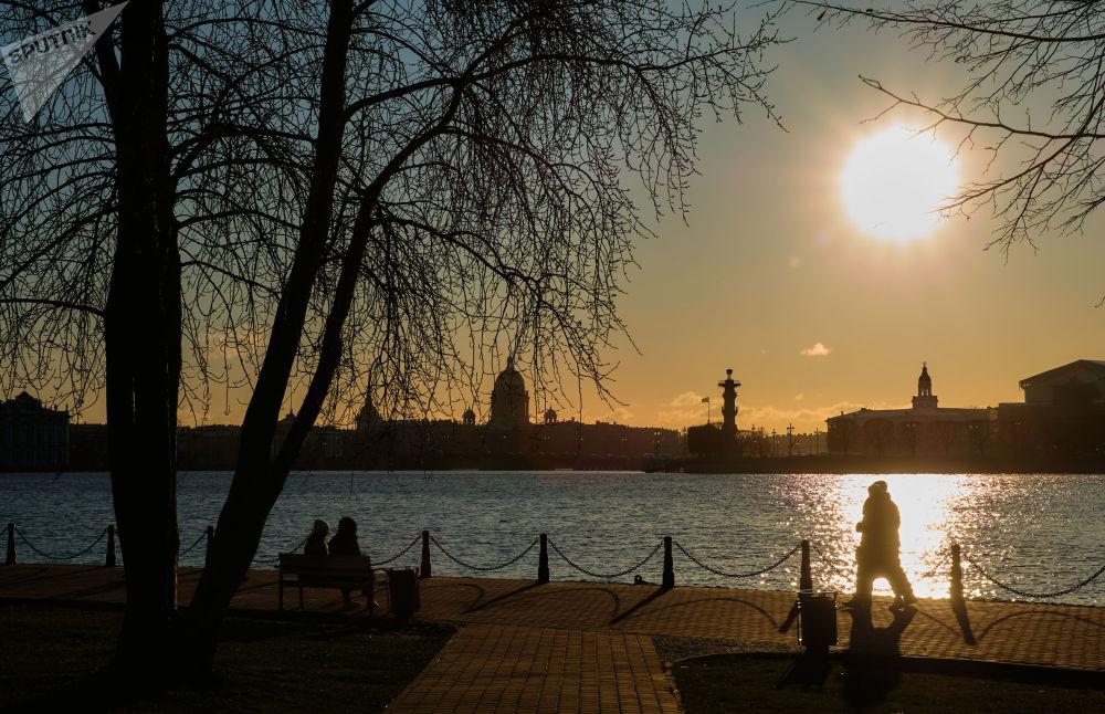 منظر يطل على جزيرة فاسيليفسكي من جهة ضفة قلعة بطرس وبولس في سان بطرسبرغ
