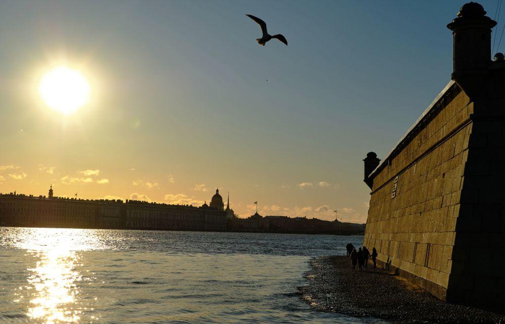 ضفة قلعة بطرس وبولس في مدينة سان بطرسبورغ