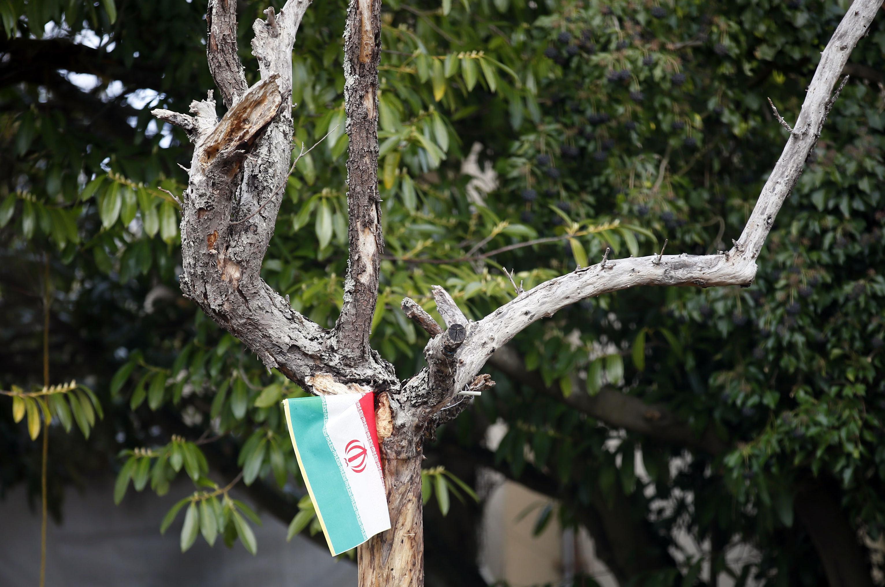 العلم الإيراني معلق على شجرة التفاح التي كان يصلي تحتها روح الله الخميني عندما كان مقيما في قرية نوفل لوشاتو  الفرنسية